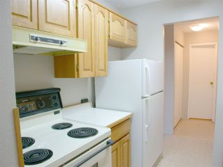 """Photo 6: 210 12096 222 Street in Maple Ridge: West Central Condo for sale in """"CANUCK PLAZA"""" : MLS®# R2531266"""