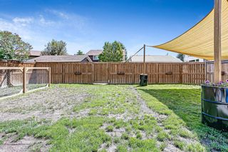 Photo 26: 908 6 Street SE: High River Detached for sale : MLS®# A1122473