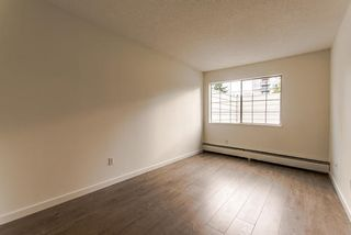 """Photo 7: 101 707 EIGHTH Street in New Westminster: Uptown NW Condo for sale in """"THE DIPLOMAT"""" : MLS®# R2208182"""