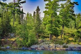 Photo 17: Lot 8 Five Point Island in South of Kenora: Vacant Land for sale : MLS®# TB212085
