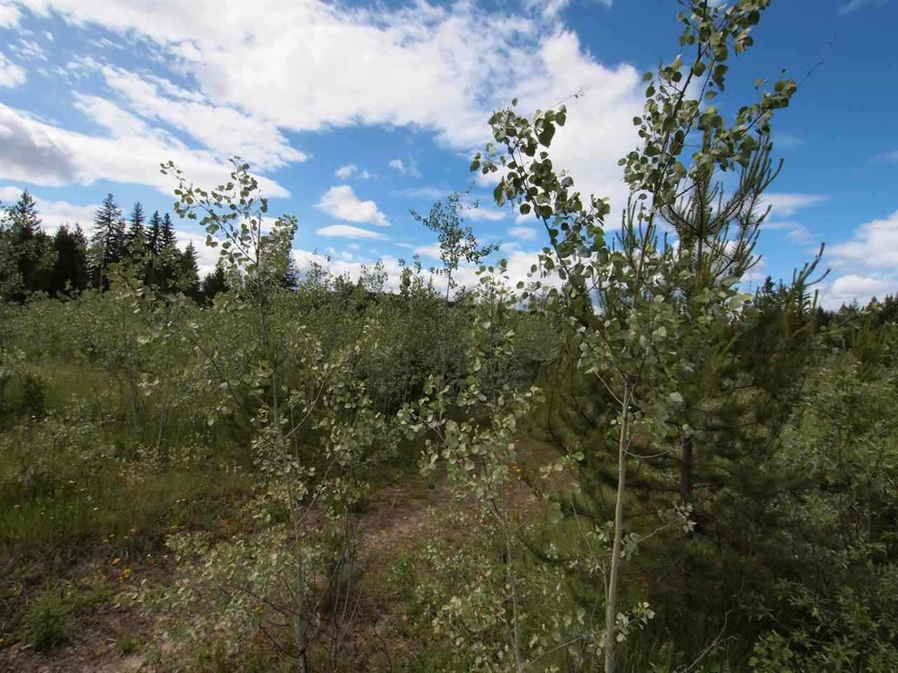 Photo 11: Photos: 4573 BAKKEN Road: Forest Grove Land for sale (100 Mile House (Zone 10))  : MLS®# R2377308