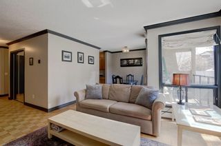 Photo 4: 203 917 18 Avenue SW in Calgary: Lower Mount Royal Apartment for sale : MLS®# A1099255