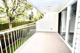 Photo 32: 52 3054 Trafalgar Street in Abbotsford: Central Abbotsford Townhouse for sale : MLS®# R2578031