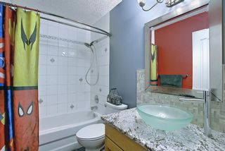 Photo 28: 328 Templeton Circle NE in Calgary: Temple Detached for sale : MLS®# A1074791