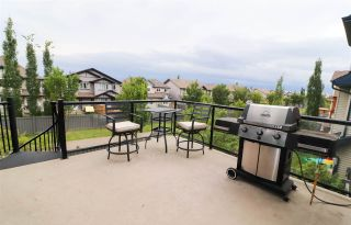 Photo 14: 2017 ARMITAGE Green in Edmonton: Zone 56 House for sale : MLS®# E4198266