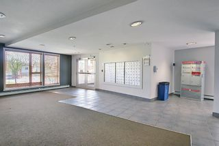 Photo 25: 202 69 Springborough Court SW in Calgary: Springbank Hill Apartment for sale : MLS®# A1123193