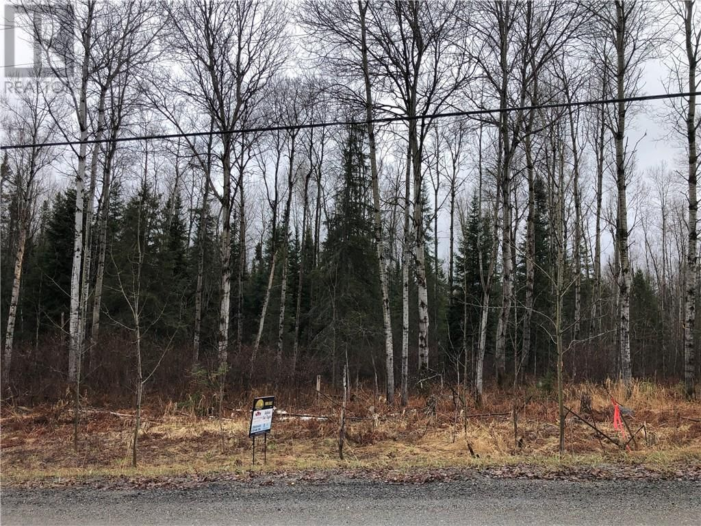 Main Photo: 1252 Dryden Rd E Unit# LOT A in Wahnapitae: Vacant Land for sale : MLS®# 2094595