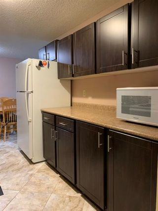 Photo 7: 206 280 Banister Drive: Okotoks Apartment for sale : MLS®# A1145640