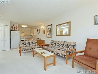 Photo 3: 310 1485 Garnet Rd in VICTORIA: SE Cedar Hill Condo for sale (Saanich East)  : MLS®# 757974