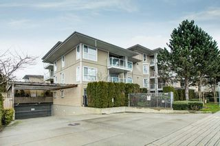 "Photo 27: 214 22255 122 Avenue in Maple Ridge: West Central Condo for sale in ""MAGNOLIA GATE"" : MLS®# R2539586"