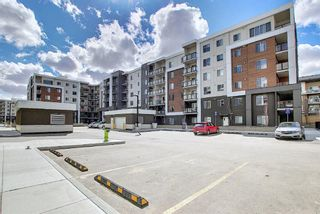 Photo 1: 3420 4641 128 Avenue NE in Calgary: Skyview Ranch Apartment for sale : MLS®# A1106326