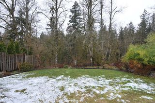 "Photo 18: 24553 KIMOLA Drive in Maple Ridge: Albion House for sale in ""HIGHLAND FOREST"" : MLS®# R2144341"