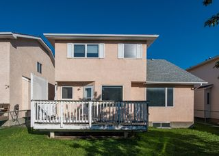 Photo 44: 186 Coral Springs Boulevard NE in Calgary: Coral Springs Detached for sale : MLS®# A1146889