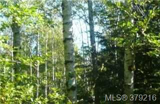 Photo 5: LOT A West Coast Rd in SHIRLEY: Sk Sheringham Pnt Land for sale (Sooke)  : MLS®# 761554