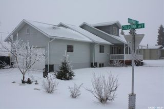 Photo 1: 101 Halpenny Street in Viscount: Residential for sale : MLS®# SK843089