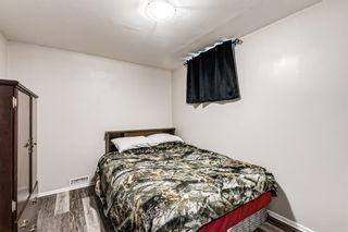 Photo 36: 459 Queen Charlotte Road SE in Calgary: Queensland Detached for sale : MLS®# A1122590