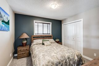 Photo 32: 7 KINGSTON View SE: Airdrie Detached for sale : MLS®# A1109347