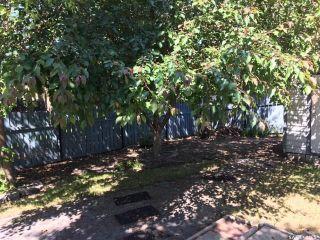 Photo 39: 910 East Bay in Regina: Parkridge RG Residential for sale : MLS®# SK739125