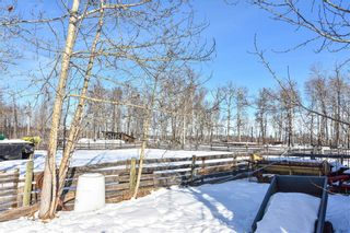 Photo 9: 53070 HIGHWAY 587: Rural Clearwater County Detached for sale : MLS®# C4285726