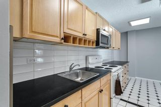 Photo 4: 307 903 19 Avenue SW in Calgary: Lower Mount Royal Apartment for sale : MLS®# A1152500
