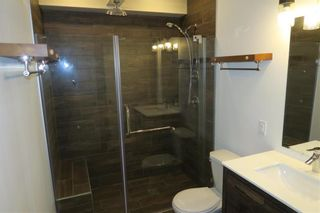 Photo 13: 19183 Cure Road in St Pierre-Jolys: R17 Residential for sale : MLS®# 202010007