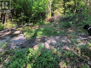 Photo 12: N/A RANEY Road E in Sundridge: Vacant Land for sale : MLS®# 40129602
