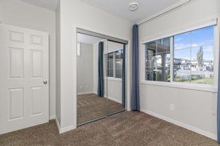 Photo 20: 20032 46 Avenue NW in Edmonton: Zone 58 House for sale : MLS®# E4262791