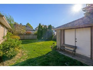 """Photo 33: 4553 217 Street in Langley: Murrayville House for sale in """"Murrayville"""" : MLS®# R2569555"""