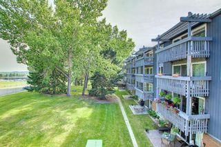 Photo 23: 327 820 89 Avenue SW in Calgary: Haysboro Apartment for sale : MLS®# A1145772