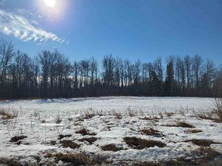 Photo 14: 50317 Rge Road 10: Rural Parkland County Rural Land/Vacant Lot for sale : MLS®# E4229985