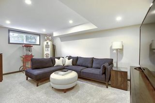 Photo 39: 44 CRANBERRY Way SE in Calgary: Cranston Detached for sale : MLS®# A1029590
