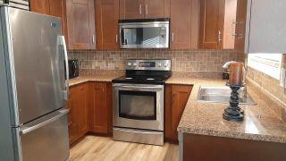 Photo 14: 21043 GREENWOOD Drive in Hope: Hope Kawkawa Lake House for sale : MLS®# R2446407