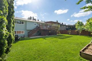 Photo 28: 8875 205 Street in Langley: Walnut Grove House for sale : MLS®# R2584982