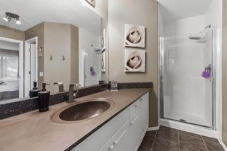 Photo 19: 296 Mt. Brewster Circle SE in Calgary: McKenzie Lake Detached for sale : MLS®# A1118914