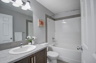 Photo 27: 304 Chinook Gate Close SW: Airdrie Detached for sale : MLS®# A1098545
