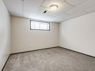 Photo 35: 57 Brightondale Parade SE in Calgary: New Brighton Detached for sale : MLS®# A1057085