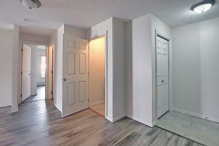 Photo 8: 201 4407 23 Street in Edmonton: Zone 30 Condo for sale : MLS®# E4254389