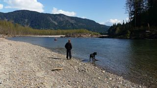 Photo 3: DL 992 MAGEE Road in Squamish: Upper Squamish Land for sale : MLS®# R2528687