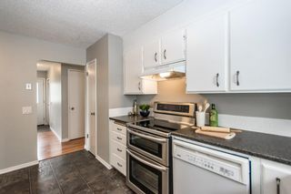 Photo 19: 3005 DOVERBROOK Road SE in Calgary: Dover Detached for sale : MLS®# A1020927