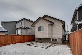 Photo 25: 399 Saddlebrook Way in Calgary: Saddle Ridge Detached for sale : MLS®# A1065807