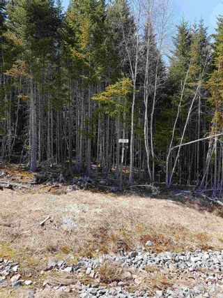 Photo 6: Lot 24 Jorphie Drive in Mount Uniacke: 105-East Hants/Colchester West Vacant Land for sale (Halifax-Dartmouth)  : MLS®# 202104200