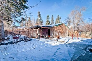 Photo 29: 105 Langton Drive SW in Calgary: North Glenmore Park Detached for sale : MLS®# A1066568