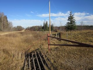 Photo 19: NW 24-54 RR 131: Niton Junction Rural Land for sale (Edson)  : MLS®# 32590