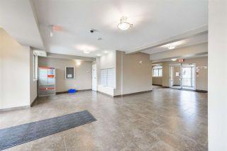 Photo 36: 112 8730 82 Avenue in Edmonton: Zone 18 Condo for sale : MLS®# E4241389