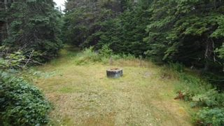 Photo 4: 6125 Gabarus Highway in French Road: 207-C. B. County Vacant Land for sale (Cape Breton)  : MLS®# 202122028