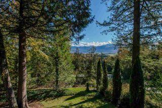 Photo 20: 3327 ATKINSON Lane in Abbotsford: Sumas Mountain House for sale : MLS®# R2384551