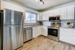 Photo 6: 4 Fawn Crescent SE in Calgary: Fairview Detached for sale : MLS®# A1066192