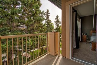 Photo 18: 4607 19 Avenue NW in Calgary: Montgomery Semi Detached for sale : MLS®# A1094225