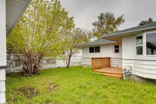 Photo 32: 2408 39 Street SE in Calgary: Forest Lawn Detached for sale : MLS®# A1139948
