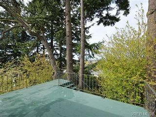 Photo 11: 3510 Richmond Rd in VICTORIA: SE Mt Tolmie House for sale (Saanich East)  : MLS®# 703026
